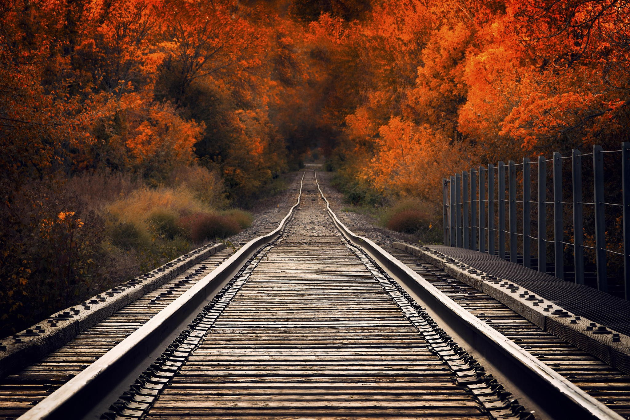 Пусть ваша осень станет незабываемой