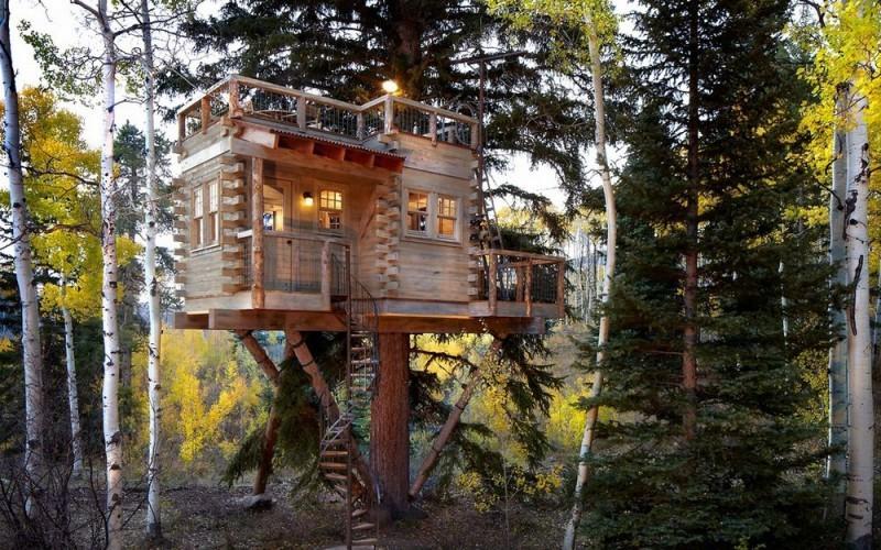 Домик на дереве  для двоих